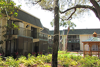 greenwich commons apartment homes tampa florida